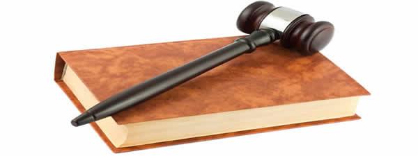 Other Litigation Services